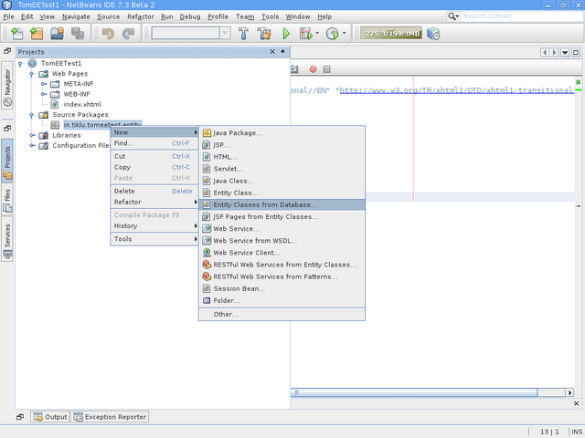 TomEE and NetBeans